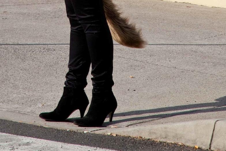 Fashion-Hound-Icon-small